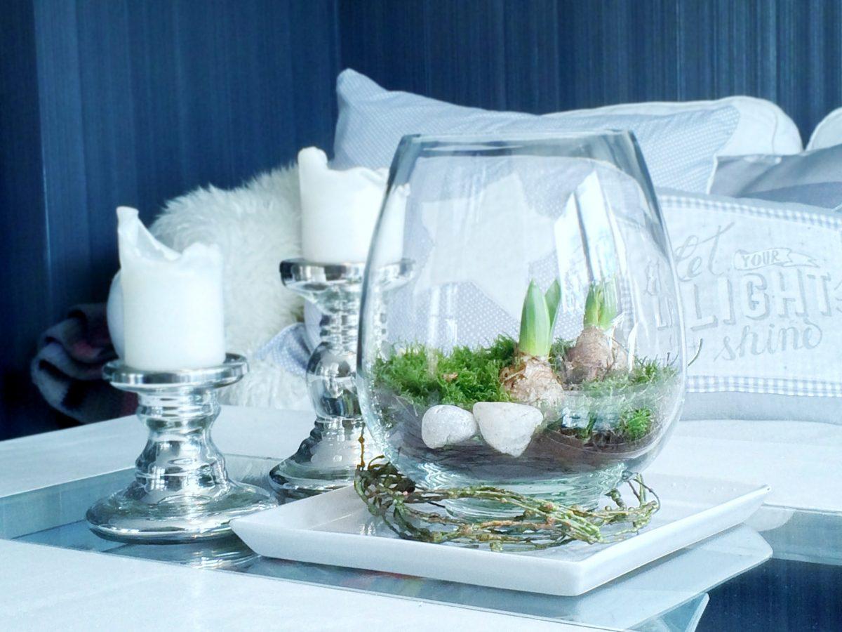 hyazinthen im glas wir holen uns mal ein bisschen gr n ins haus hyazinthen im glas. Black Bedroom Furniture Sets. Home Design Ideas
